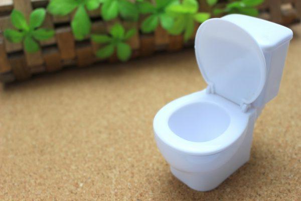 節約失敗談④:トイレを流さない