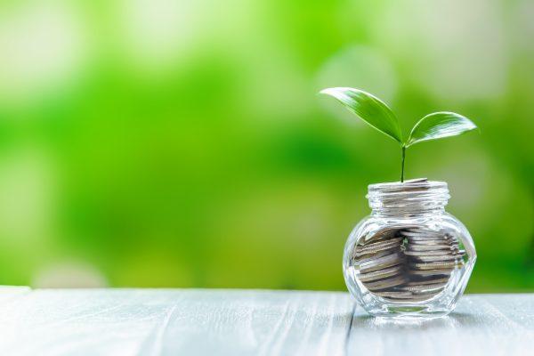 節約初心者は何から始めれば良い?