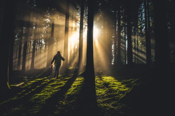 森から抜け出す人